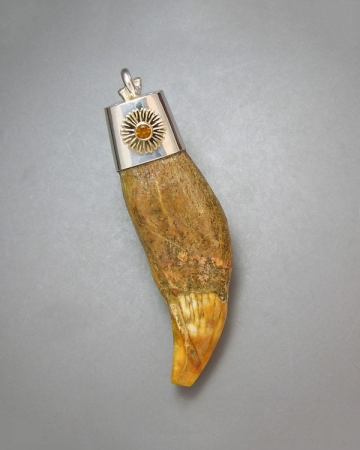 14kt. yellow gold fossilized bear tooth necklace